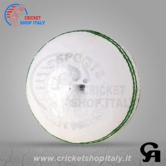 CA Super League White Cricket Ball