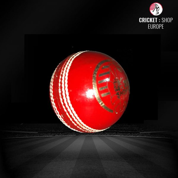 TEST SPECIAL A CRICKET BALL