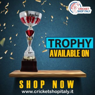 TROPHY ARTICLE 1B